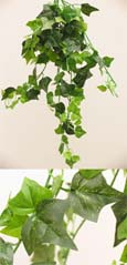 3 X Artificial Silk Small Leaf Ivy Trailing Plants (Rich Dark Green leaf) 40 CM Length & with 130+ Assorted Sized Ivy Leaves